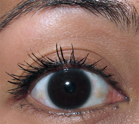 smashbox hyperlash review two layers of mascara