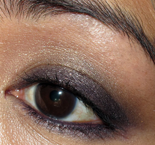 chanel enigma quad review photos swatches fall 2010 eye closeup