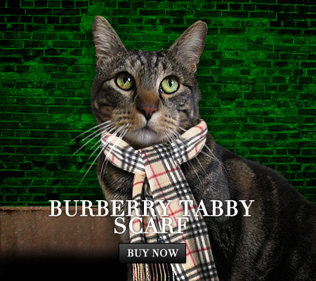 Tabs for Burberry