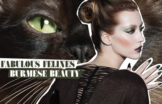 MAC Fabulous Felines Swatches Burmese Beauty