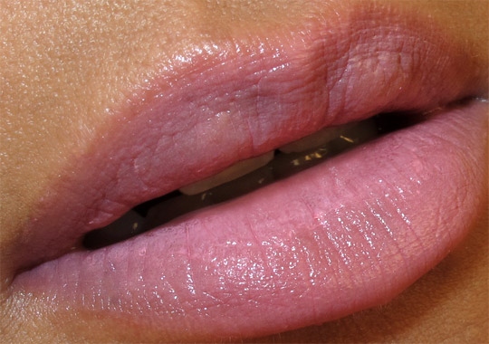 mac fabulous felines swatches review of royalty lipstick