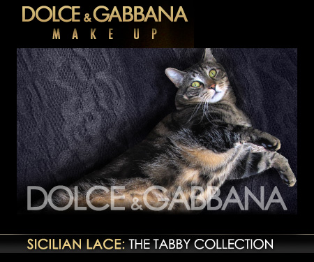 Tabs for Dolce & Gabbana Sicilian Lace