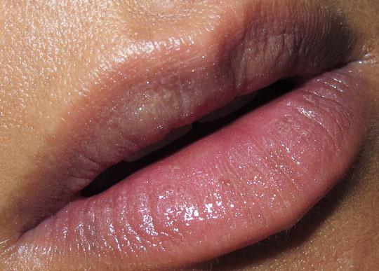 mac fabulous felines burmese beauty fotd lip
