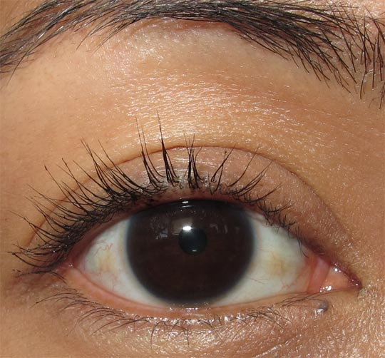 rimmel max volume flash waterproof mascara review 1