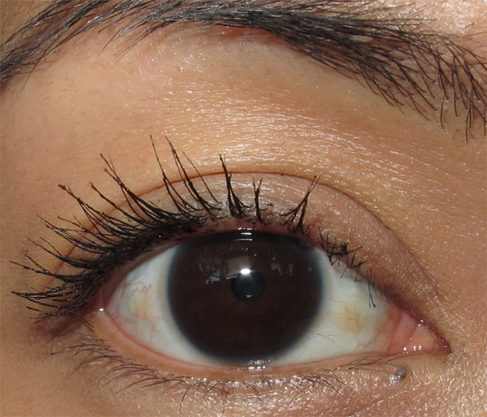 rimmel max volume flash waterproof mascara review 3