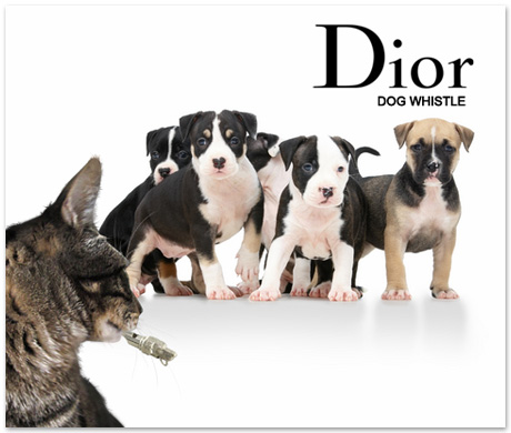 Tabs for the Dior Dog Whistle
