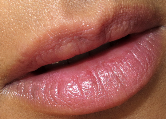 chanel les tentations de chanel holiday 2010 makeup swatches review photos collection rouge coco magnolia lip closeup