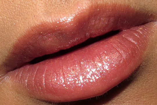 dior holiday 2010 endless shine 529 swatches photos pictures face of the day chanel lip closeup