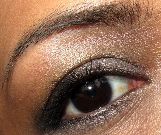 dior holiday 2010 endless shine 529 swatches photos pictures face of the day eye 2