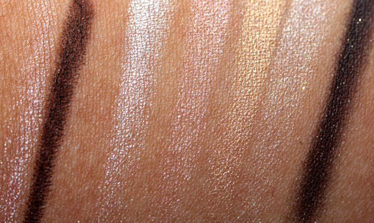 dior holiday 2010 endless shine 529 swatches photos pictures face of the day swatches 1