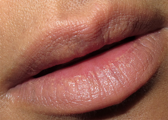 stila long wear lip color swatches review in the nude lip