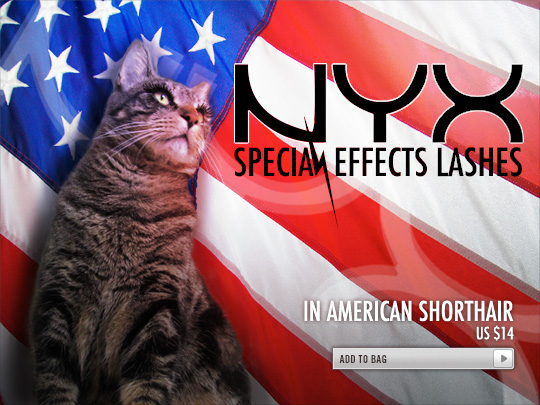 Tabs for NYX Special Effects Lashes in American Shorthair