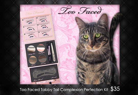 Tabs for Too Faced Tabby Tail Complexion Perfection Kit