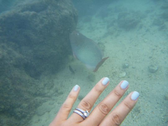 Hanauma Bay, Oahu, Hawaii - Chanel Riva underwater