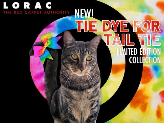 Tabs for the LORAC Tie Dye Tail Tie