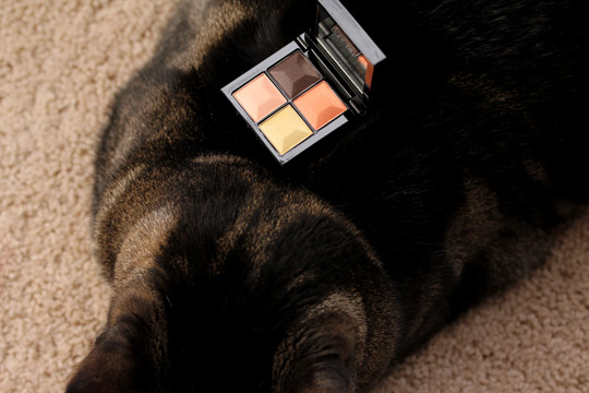 Givenchy Naivement Couture Le Prisme Eyes in Candide Garden