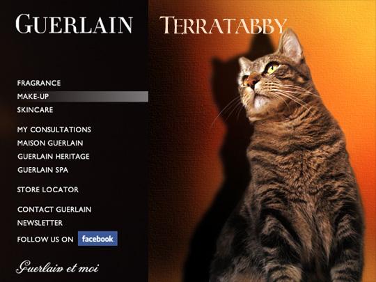 Tabs for Guerlain TerraTabby