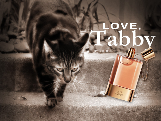 Tabs for Love Tabby Perfume by Chloe