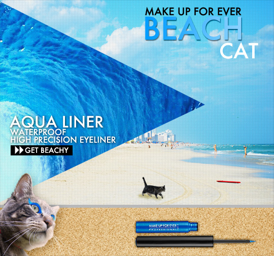 Tabs for Make Up For Ever Aqua Liner in Beach Cat