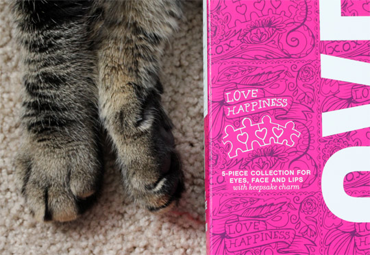 bareminerals love happiness collection box closeup with paws