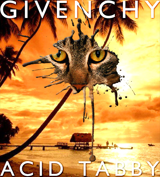 Tabs for the Givenchy Acid Tabby Collection