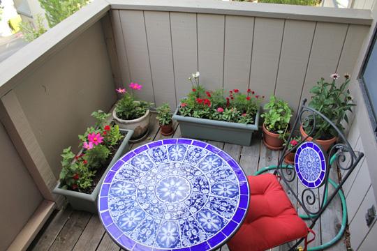 Cat friendly deck garden