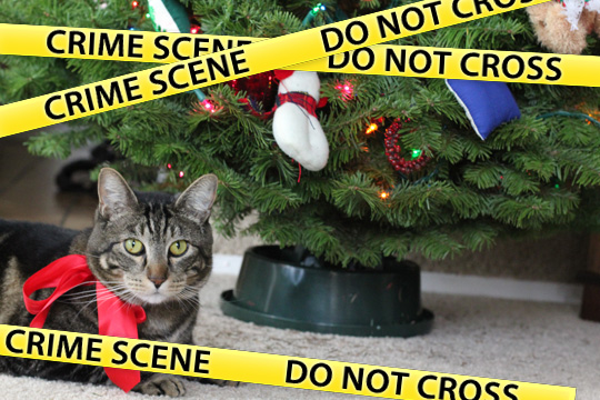 Tabs and the Christmas tree incident