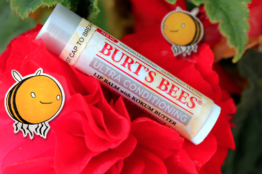 Burt's Bees Ultra Conditioning Lip Balm