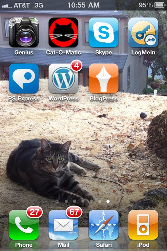 My iPhone screen