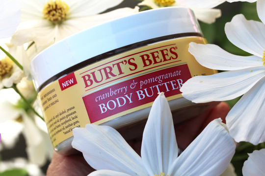 burts bees cranberry pomegranate body butter (1)
