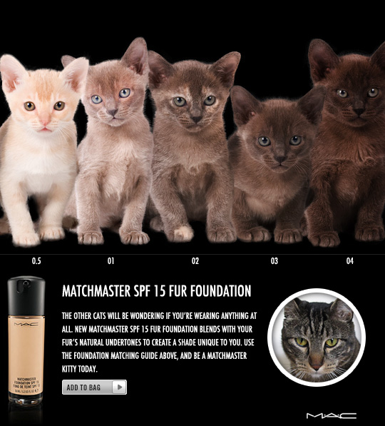 Tabs for MAC Matchmaster Fur Foundation
