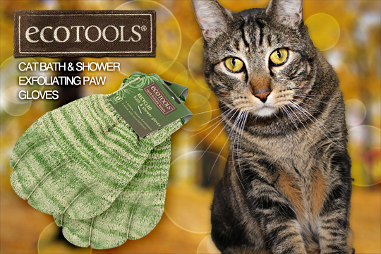 Tabs for the EcoTools Exfoliating Paw Gloves