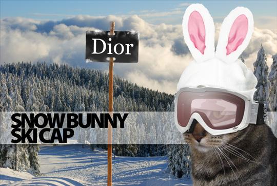 Tabs for the Dior Snow Bunny Ski Cap