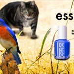 Tabs for Essie Bluebird Nail Polish