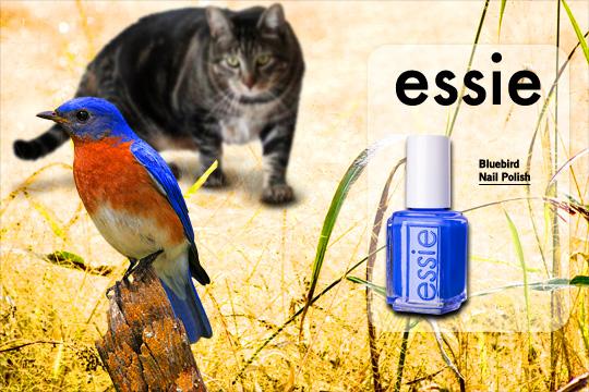 Tabs for Essie Bluebird Nail Polish