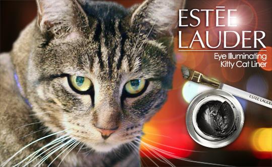 Tabs for Estee Lauder Eye Illuminating Liner