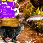 Tabs for Tarte Tabby Tummy Tint in Rainbow Trout