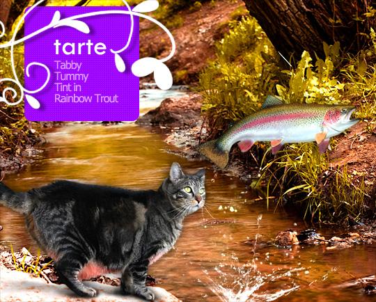 Tabs for Tarte Tabby Tummy Tint in Rainbow Trout