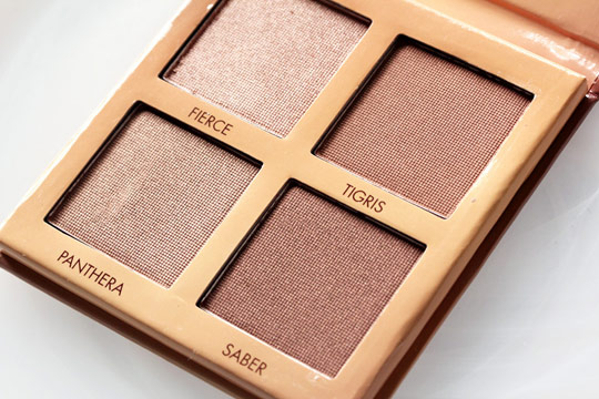 lorac wild for tantalizer