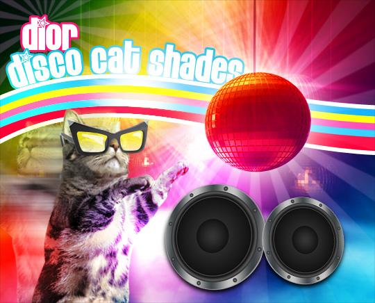 Tabs for the Dior Disco Sunglasses