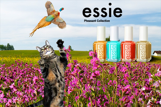 Tabs for the Essie Pheasant Collection