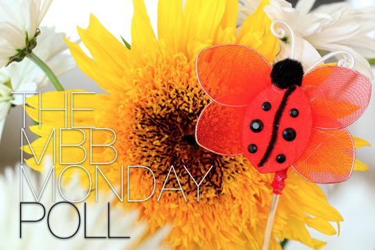 the makeup and beauty blog monday poll