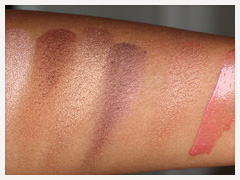 LORAC Wild for TANtalizer Collection