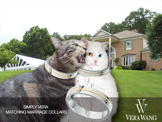 Tabs for Simply Vera Vera Wang Marriage Collars