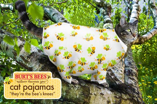 Tabs for Burt's Bees Cat Pajamas