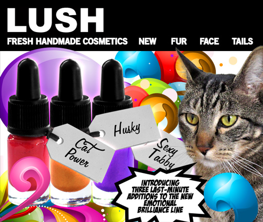 Tabs for Lush Emotional Brilliance Special Edition Colors