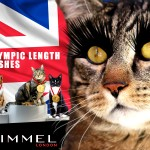 Tabs for Rimmel Olympic Length Lashes