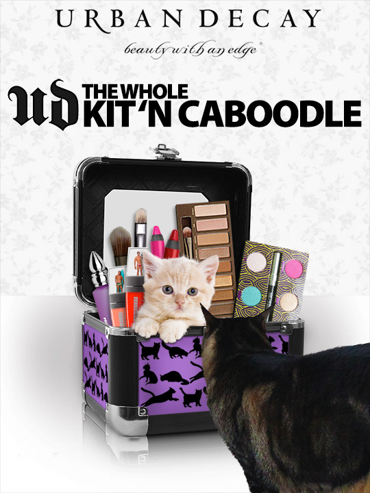 Tabs for the Urban Decay Kitn Caboodle