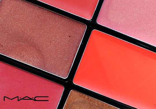mac pro lip palette editorial oranges