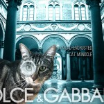 Tabs for the Dolce & Gabbana Cat Monocle